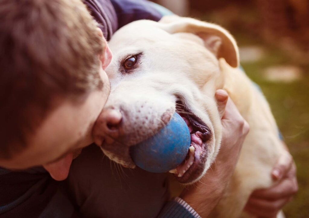 Image of a man playing with his adopted mature adult dog