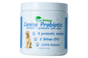 Image of BlueBiology Canine Probiotic